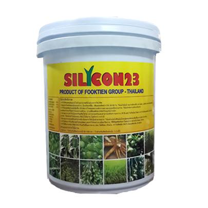 Silicon 23