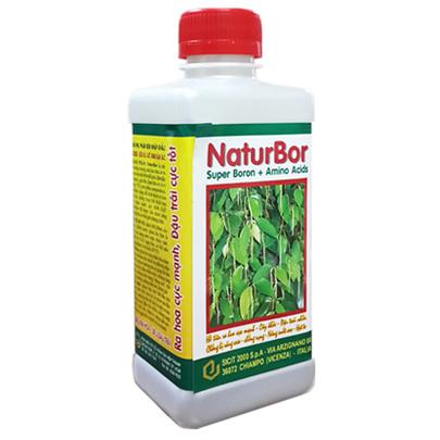 NaturBor
